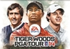 Preview: Tiger Woods 2014