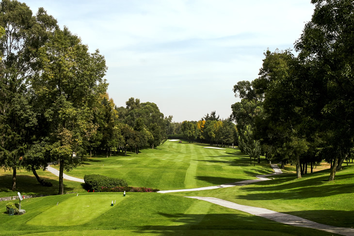 WGC-Mexico Championship 2020 Preview