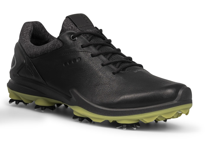 Natural Motion For Ecco Biom G3 Shoes
