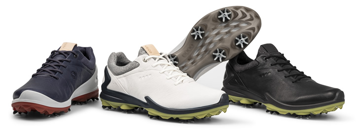 Ecco Biom G3 Shoes