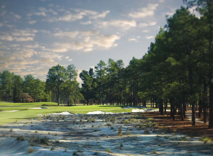 Pinehurst No.2 12th Hole
