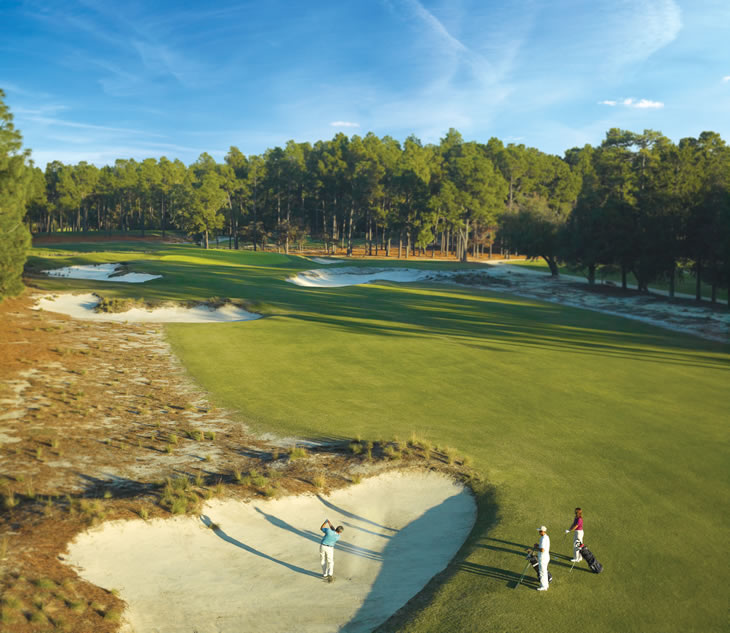 Pinehurst No.2 14th Hole