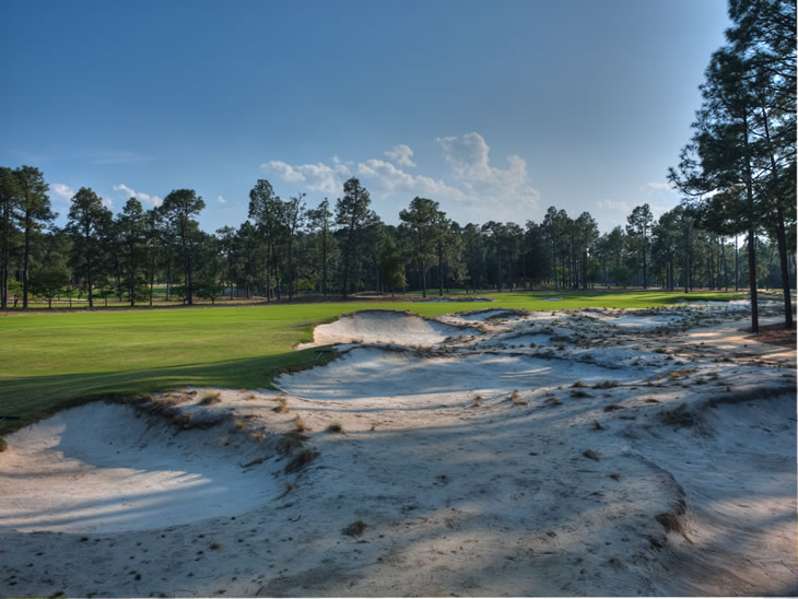 Pinehurst No.2 7th Hole
