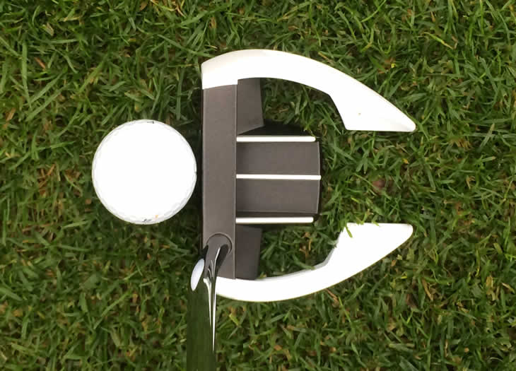 TaylorMade Ghost Spider Si Putter Address